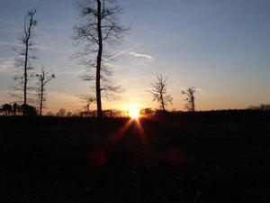Ochrana přírody atěžba dřeva